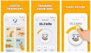 Dog Whistle with Training Lessons for Dog Training