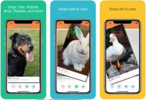Furry Friend Finder Pet Rescue