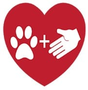 Pets Adoption: Adopt Rescue Losts And Daily Posts