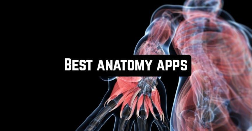 Best anatomy apps