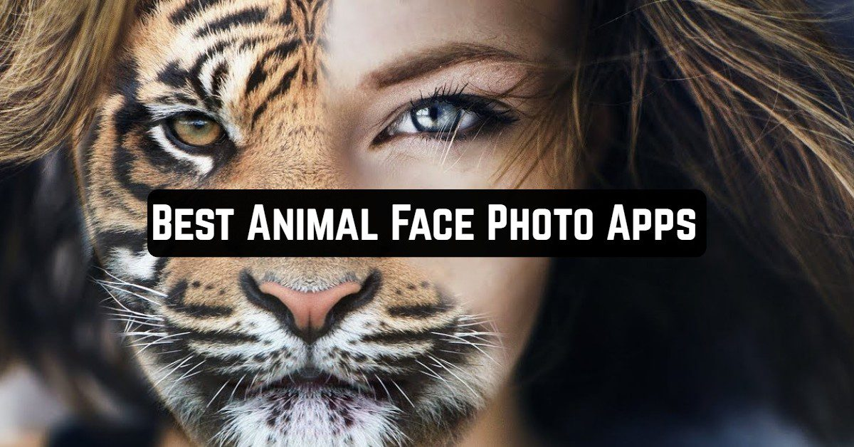 Best Animal Face Photo Apps